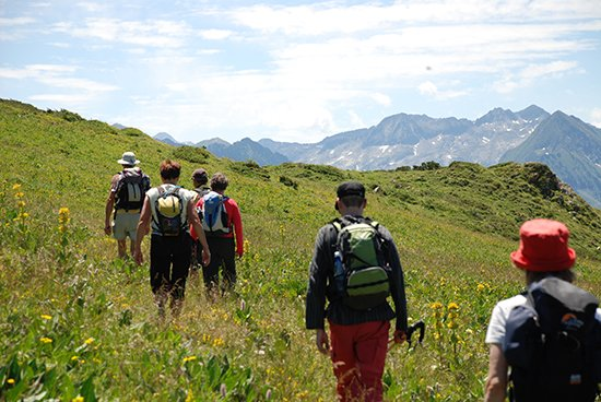 pyrenees1.jpg